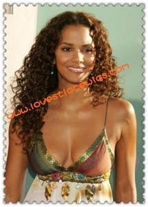 halle berry long curly lace front wig wholesale with baby hair